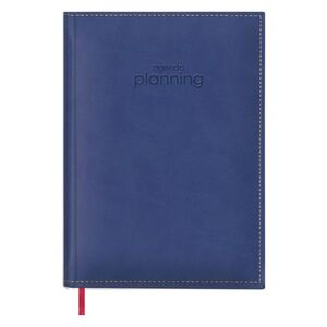 PLANNING PERPETUO 21X29 AZIL