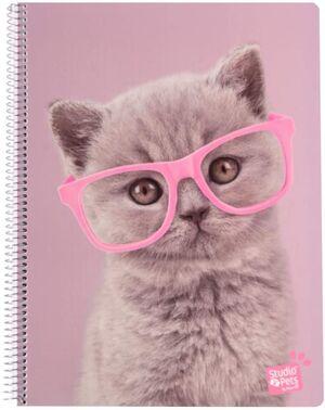 CUADERNO 5X5 MM A4 PP ERIK STUDIO PETS CATS