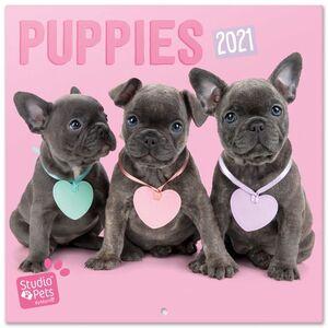CALENDARIO PARED 30X30 STUDIO PETS PUPPIES 2021