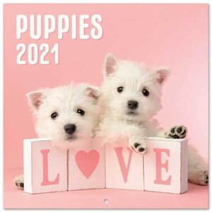 CALENDARIO PARED 30X30 DOG SIMON K. & GREG C. 2021