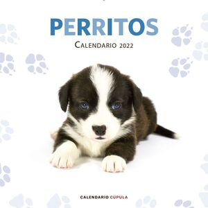 CALENDARIO PERRITOS 2022